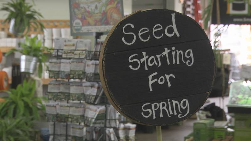 seeds section at fifth season garden company