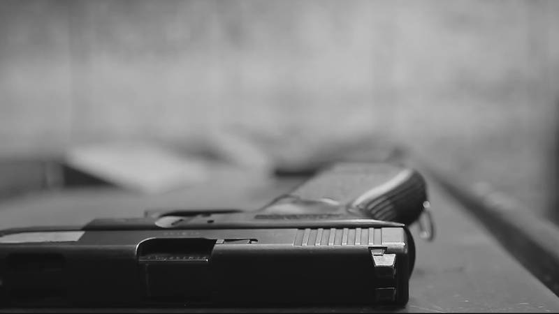 2020 has been marked by an increase in gun violence, but suicides involving firearms are also...