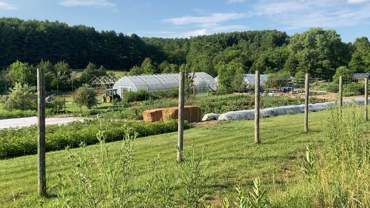 Project Grows farm in Verona