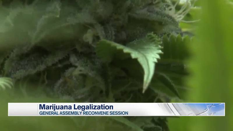 The General Assembly legalizes marijuana starting July 1.