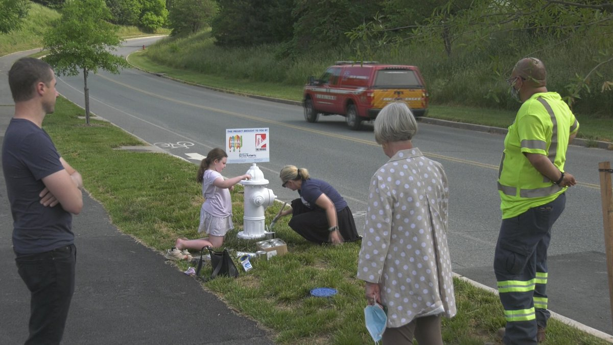 Fire hydrants in Albemarle County are getting some murals painted on them