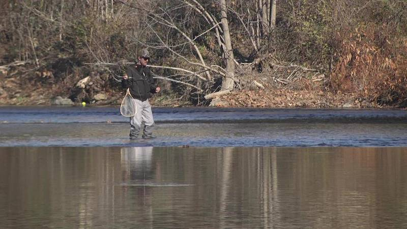 A fisherman walks through the water of the South River in Waynesboro.