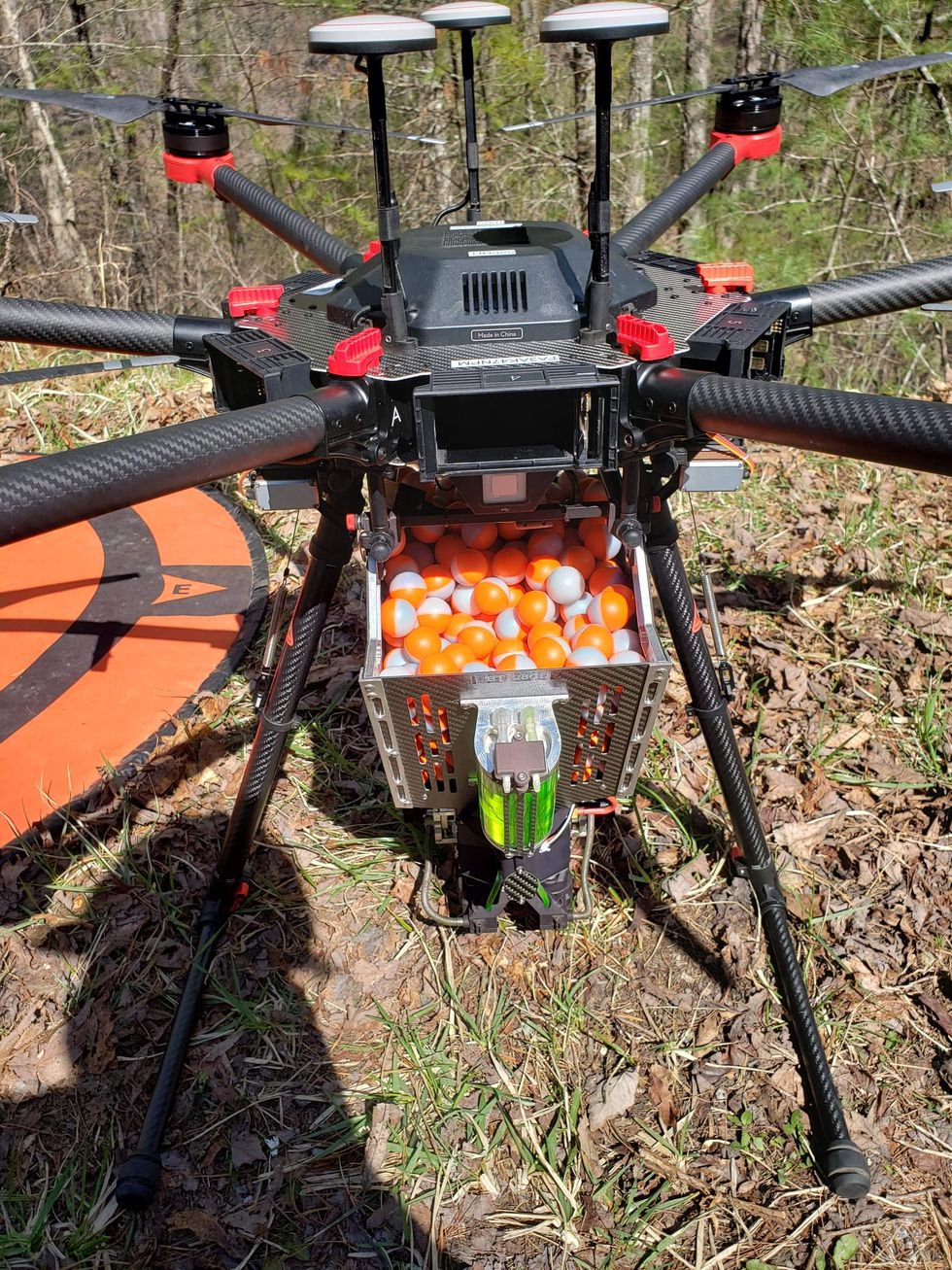 Forest managers use a drone that drops balls with with combustible material to light prescribed...