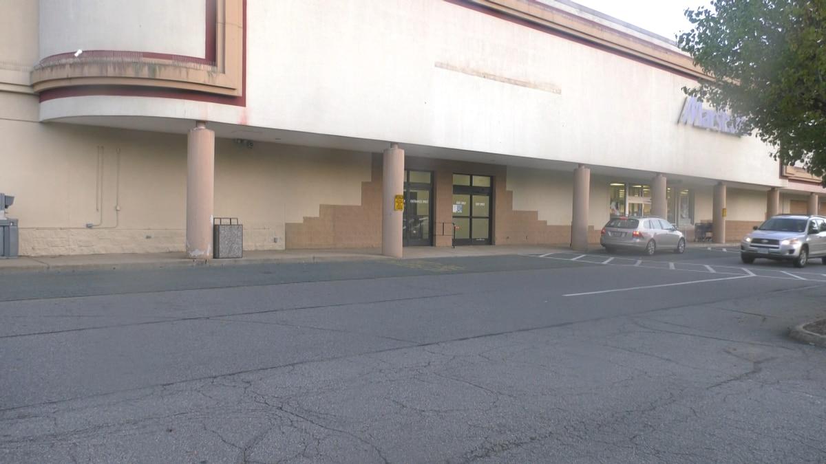 Former Big Lots store in Albemarle County.