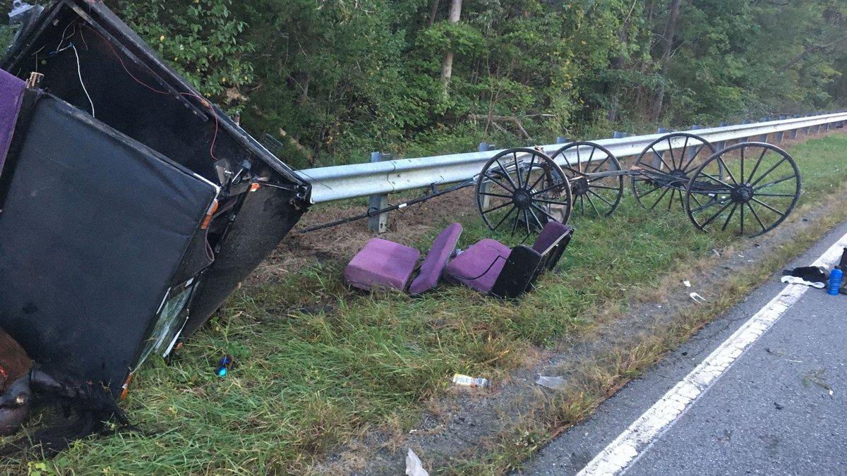 Horse & buggy crash