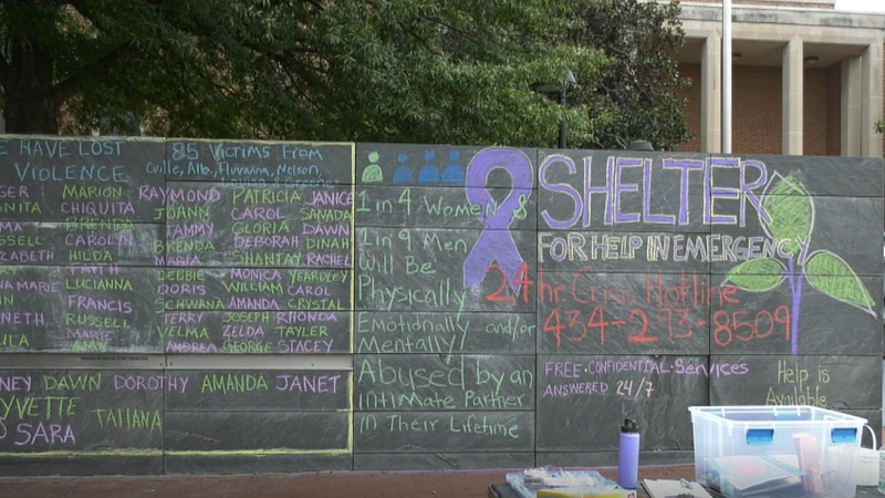 The Shelter for Help in Emergency and The Bridge Progressive Arts Initiative are partnering up...
