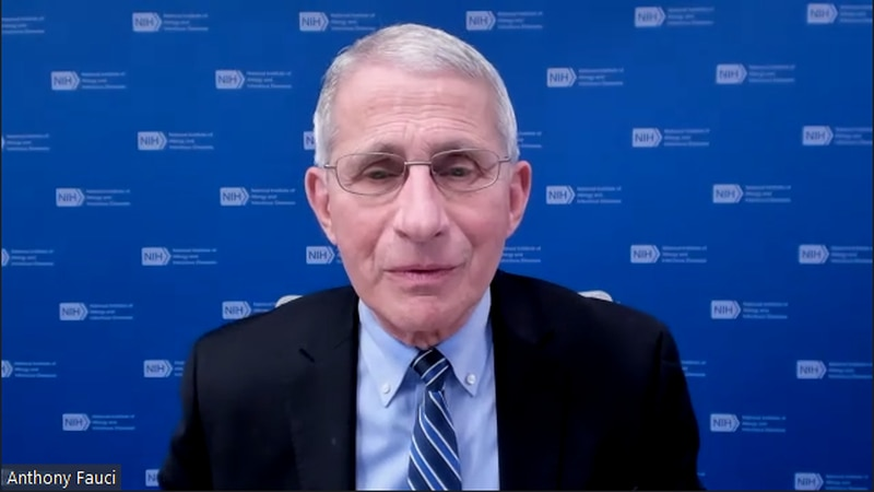Dr. Anthony Fauci speaks during a webinar hosted by the Virginia Department of Health's Office...