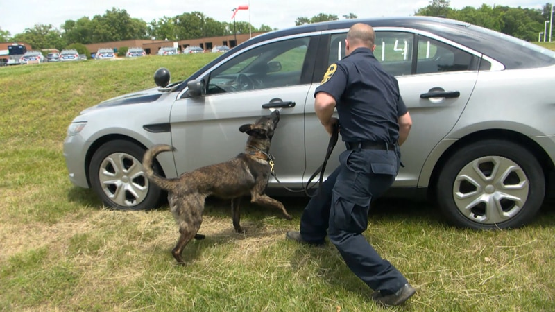 Virginia State Police is training new K-9's to go out into the field following a new law...