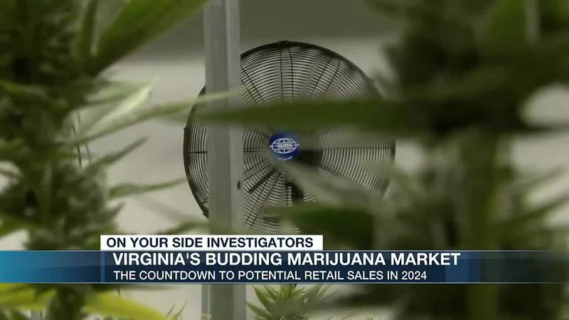 Countdown to retail sale: Inside central Virginia's largest marijuana facility