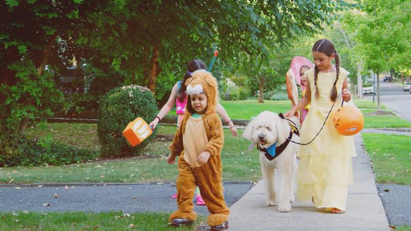 Kids are getting ready to go trick-or-treating. (WHSV)