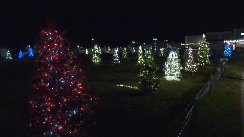 Trees are lit up on the Tinsel Trail at the Shops at Stonefield