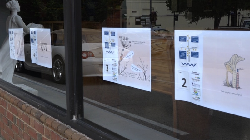 """Pages of """"It's TIme to Fly"""" on the Russell Museum in downtown Waynesboro."""